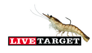 live-target-shrimp-with-logo-small